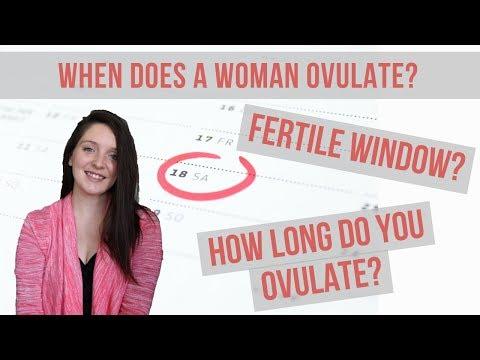 OVULATION / WHEN AM I FERTILE?