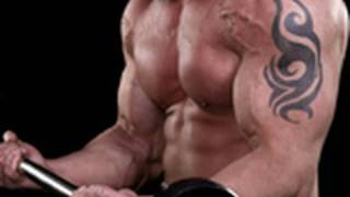 best bicep home workout get big arms fast bicep curl hammer curl