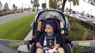 Bub on a Stroll 6 6 2015