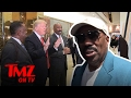 Steve Harvey: What Does He Really Think About Donald Trump? | TMZ TV