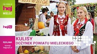 hej.mielec.pl TV: KULISY DOŻYNEK POWIATU MIELECKIEGO 2017