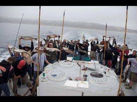 Wide Open White Seabass on the Pacific Islander w/ PFO