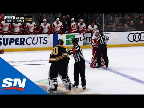 Jimmy Howard, Tuukka Rask Ready To Fight After Things Get Chippy In Boston