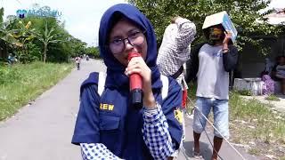 Demen Bli Mari Mari Burok Darama Muda Live Jatiseeng Kidul Ciledug Cirebon 21-04-2019.mp3