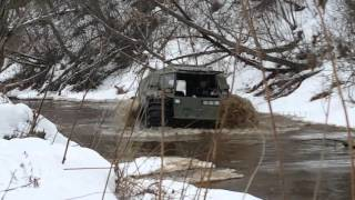 Sherp on forest river