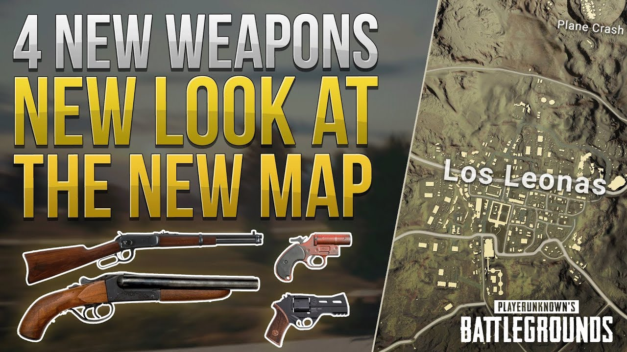 how to see all the stats on pubg