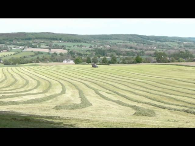 Heuvellandschap Zuid-Limburg
