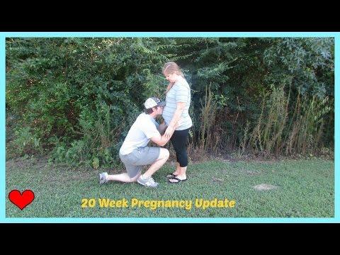 20-week-pregnancy-update
