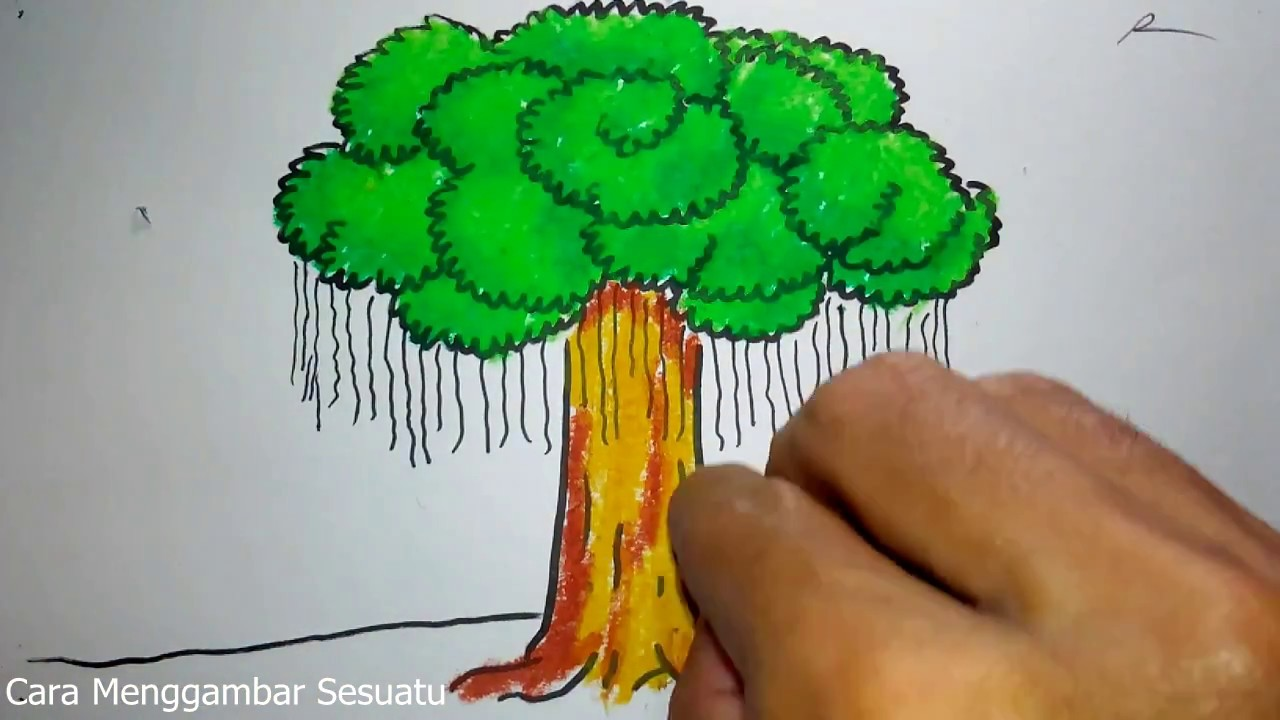 Cara Menggambar Siluet Pohon Dan Burung Youtube – Cuitan Dokter