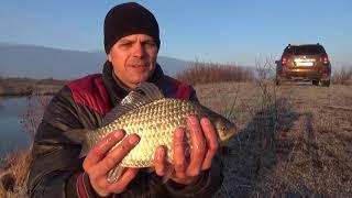 Таких карасей не держит фрикцион Вот так бывает на рыбалке