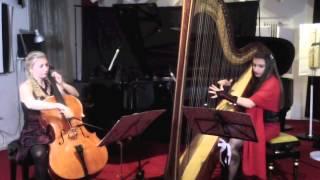 Trascrizione Amelie per violoncello e arpa