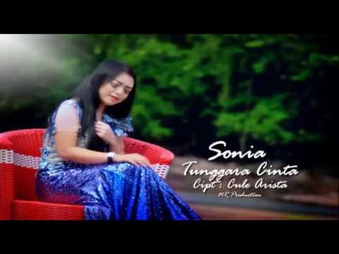 Tunggara cinta _ sonia new ARISTA