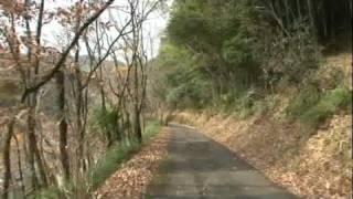 竹林と紅葉の道を梼原の茶堂、郷土ゆかりの六志士の墓まで歩きました。 ...