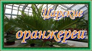 Александровский парк.  Царские оранжереи.  Экскурсия в верхние теплицы.(, 2016-04-26T17:17:25.000Z)
