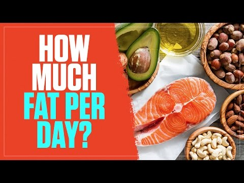 How Many Grams of Fat Should You Eat Per Day? - Legion Athletics