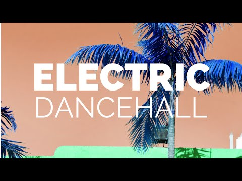 ELECTRIC DANCEHALL: Atlanta event for fans of EDM, Reggae, Soca and related genres