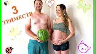 3 триместр беременности. Мой опыт+советы+животик