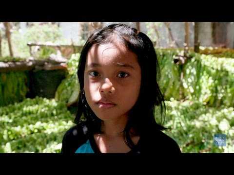 Hazardous Child Labor on Indonesian Tobacco Farms