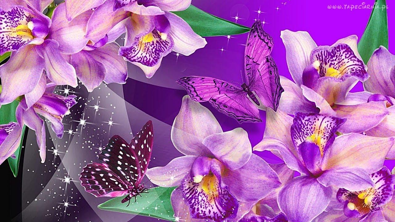 фанеры поздравительная открытка с орхидеями гибискуса