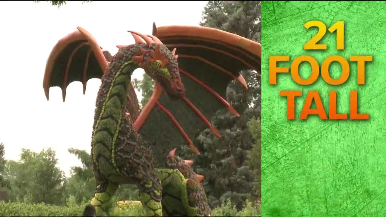 Atlanta Botanical Garden\'s Imaginary Worlds returns - YouTube
