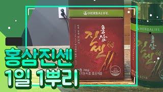 허벌라이프 홍삼진센 1일1뿌리
