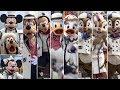 ºoº [完全編集版] TDS イッツ・クリスマスタイム ディズニーシークリスマスショー It's Christmas Time DisneySEA