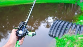 Catching GIANT Bass on BIG WORMS (Bank Fishing)