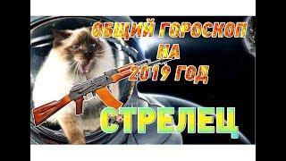 видео Гороскоп на 2019 год Стрелец