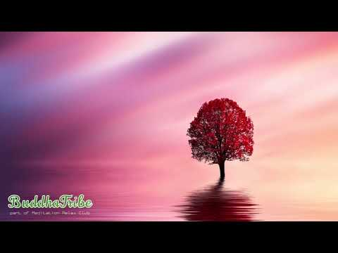 Music for Relaxation ☽ Deep Relaxation, Tranquil Heart, Relaxation and Harmony, Inner Peace