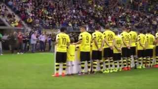 SV Waldhof Mannheim 07 vs. Borussia Dortmund Freundschaftsspiel 14/15