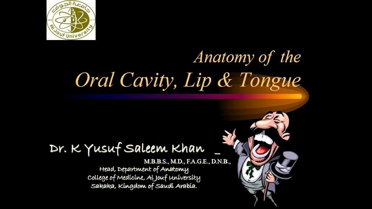 Anatomy Lecture on Oral Cavity - lip & tongue ......... by Dr. Yusuf ...