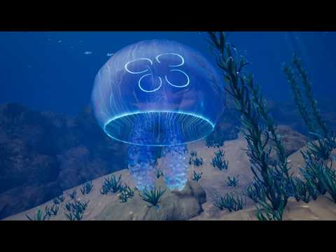 Ocean Environment Pack - Unreal 4 Asset