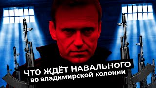 Колония Навального самая жестокая зона России Бывшие арестанты об ИК 2 в Покрове