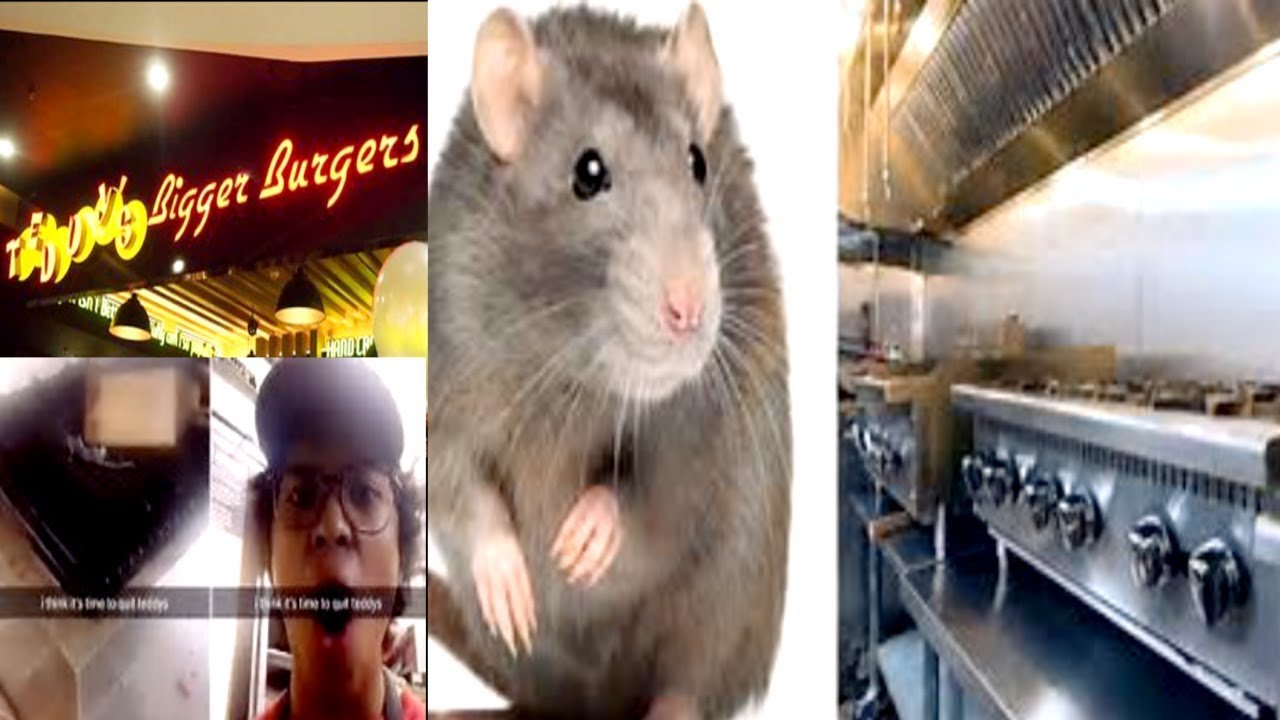 hawaii-burger-restaurant-closes-after-worker-cooking-rat-on-grill-goes-viral