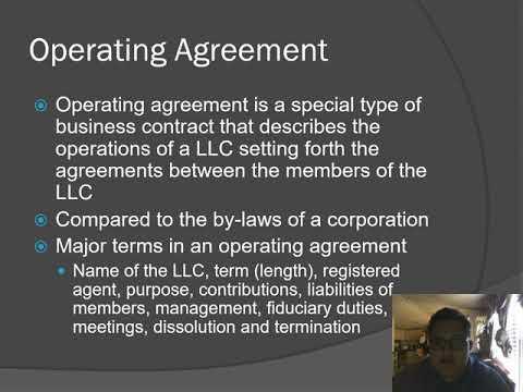 Limited Liability Companies IPP