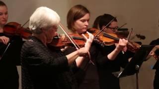 Meet the Lyra Baroque Orchestra