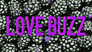 Veeblefetzer - Love Buzz (Nirvana / Shocking Blue cover)