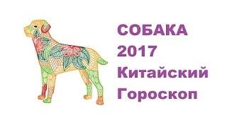 Гороскоп Собака -2017. Астротиполог, Нумеролог - Дмитрий Шимко