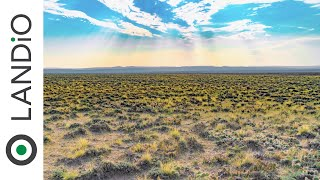 40 Acres of Land for Sale in Wyoming for 18k LANDiO