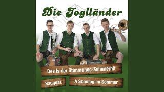 Des Is Der Stimmungs Sommerhit (Radio Edit)