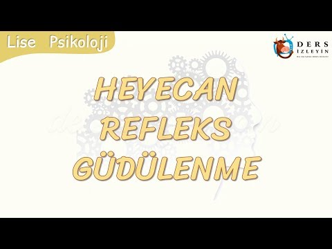 HEYECAN - REFLEKS - GÜDÜLENME