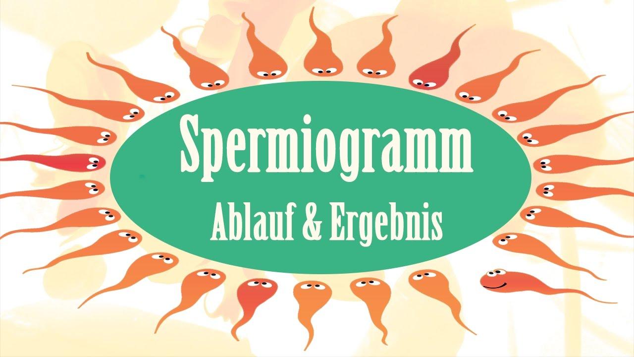 wie funktioniert ein spermiogramm