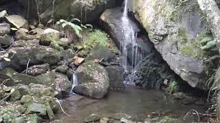 Rio Enmedio