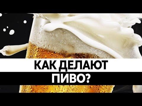 Как производят пиво