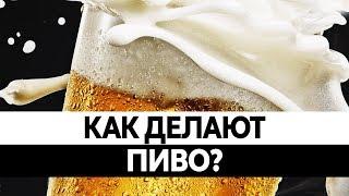 Как ДЕЛАЮТ ПИВО? Польза и вред пива. Вся правда!(, 2016-05-06T11:24:21.000Z)