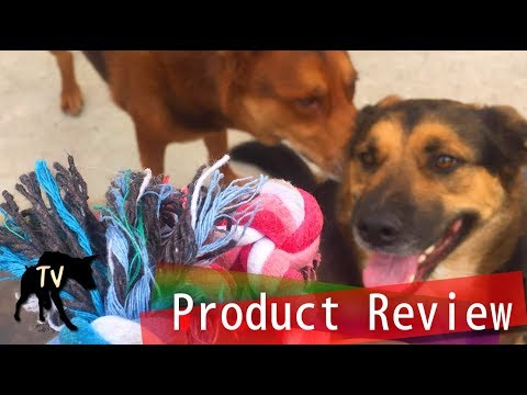 mammoth-flossy-rope-toy-product-review