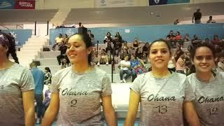 Finales Copa de Voleibol Guadalajara 2019