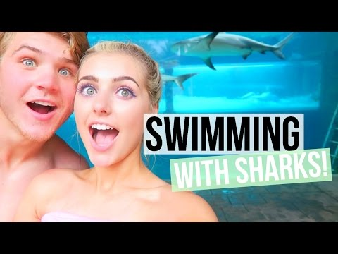 SWIMMING WITH SHARKS IN THE BAHAMAS | Aspyn + Parker