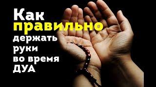СУННА: Руки во время ДУА нужно держать ИМЕННО ТАК