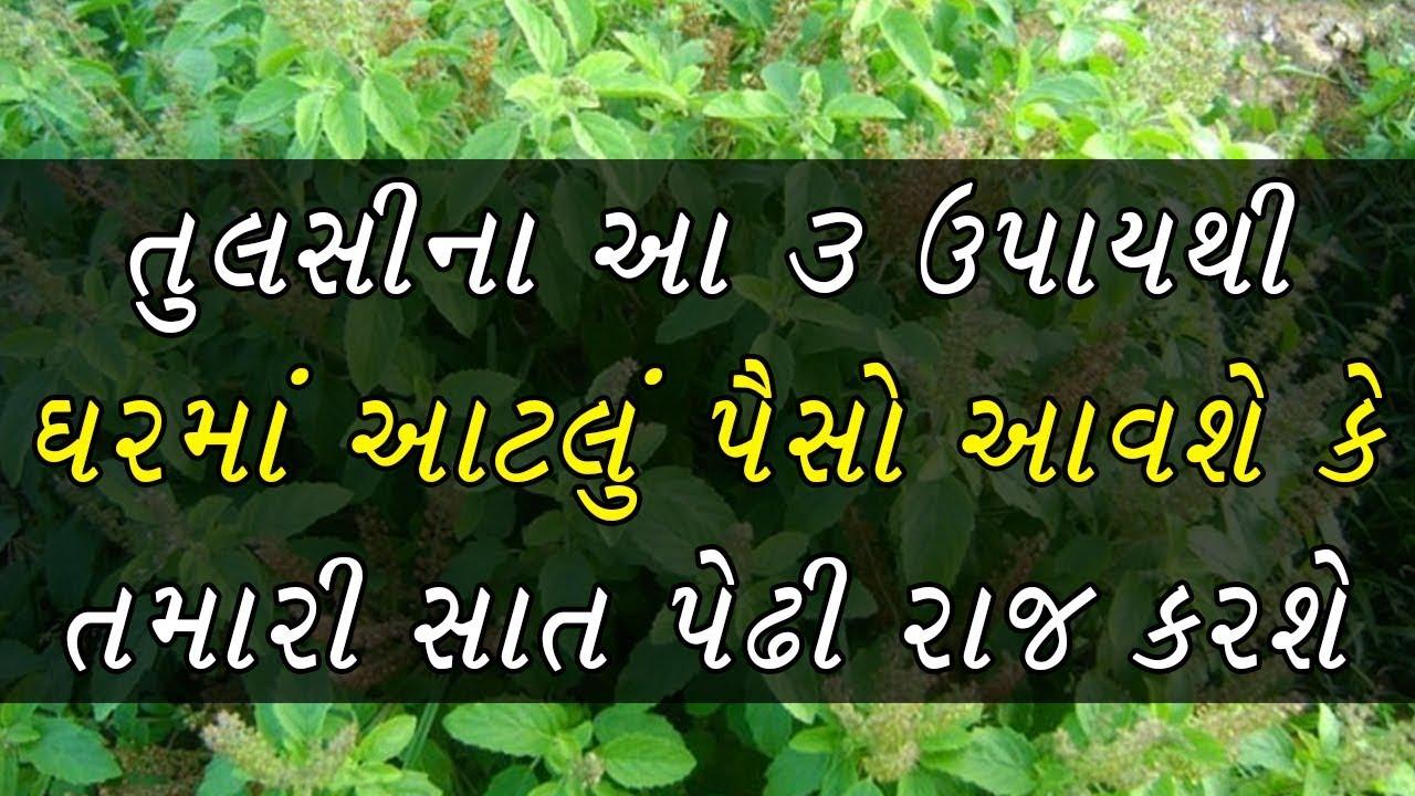 Gujarati News | Gujarat Samachar | ગુજરાત સમાચાર
